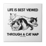 La vida se ve mejor a través de una siesta del gat teja cerámica