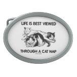 La vida se ve mejor a través de una siesta del gat hebillas cinturón