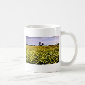 la violación amarilla coloca, Cambs, flores de Ing Tazas De Café