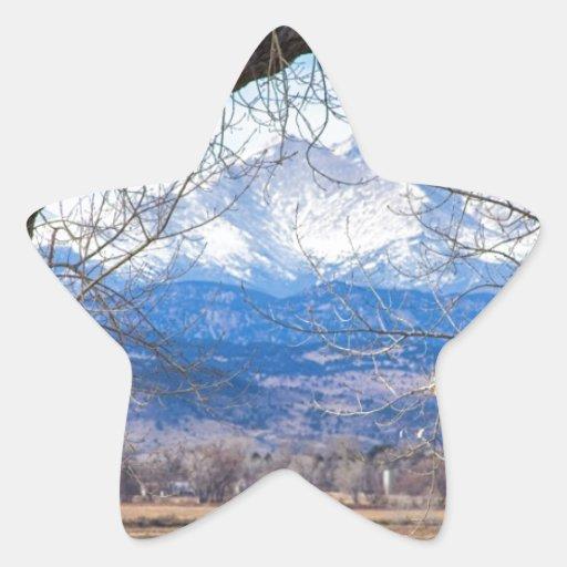 La visión a través de los árboles desea pico pegatina forma de estrella personalizada