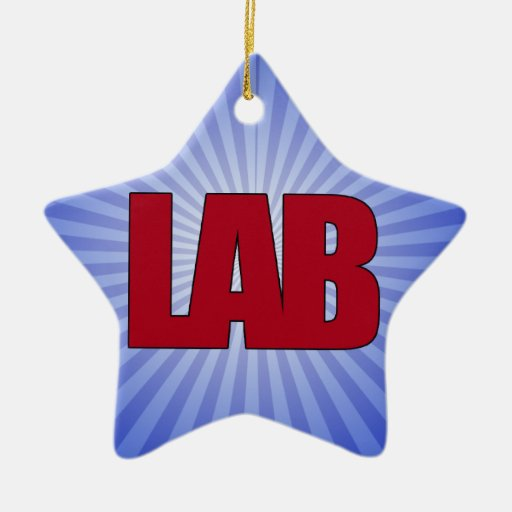 LAB - BIG RED BOLD MEDICAL LABORATORY LOGO Double-Sided STAR CERAMIC CHRISTMAS ORNAMENT