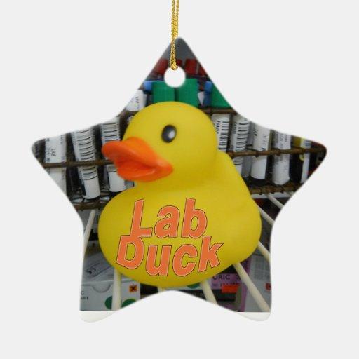 LAB DUCK CHRISTMAS ORNAMENT