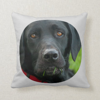 Lab Grass for Lunch Black Lab Pillow