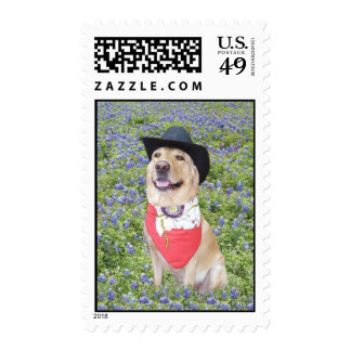 Lab in Bluebonnets Stamps