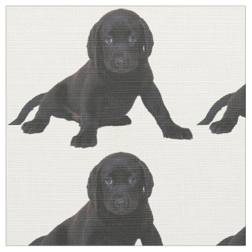 Professional Business Lab Labrador Retriever Eyes Face Puppy Pet Fabric