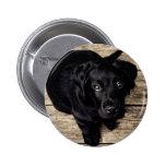lab puppy 2 inch round button