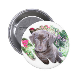 Lab Puppy Button