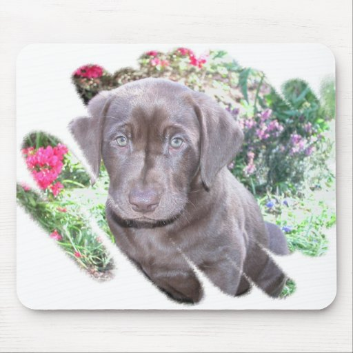 Lab Puppy Mouse Pad