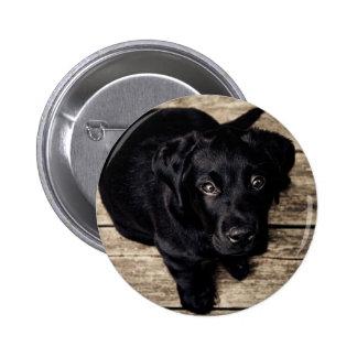 lab puppy pinback button