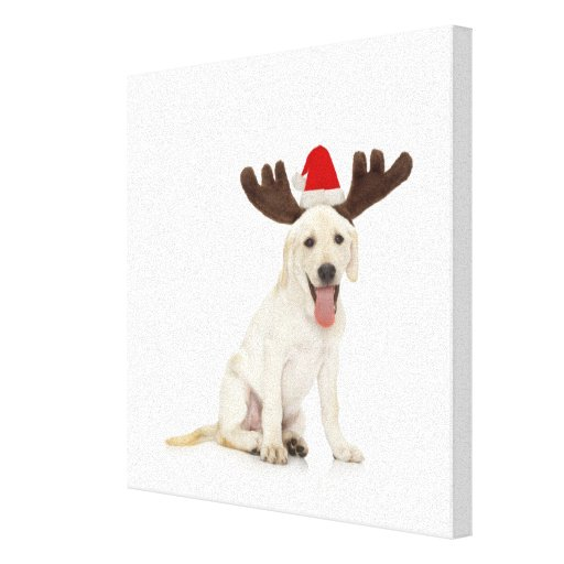 Lab Puppy Wearing Antlers Gallery Wrapped Canvas