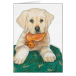 Lab Puppy with Rubber Ducky Greeting Cards