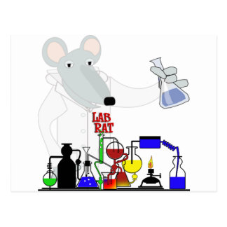 LAB RAT CHEMISTRY POSTCARD