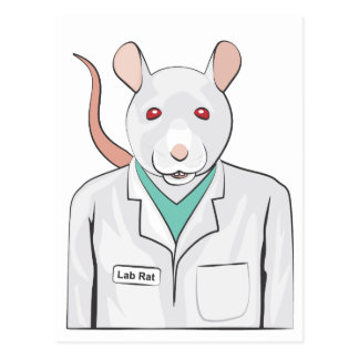 Lab Rat Postcard