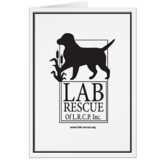 Lab Rescue Note Card
