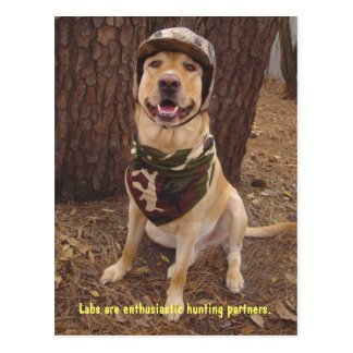 Lab Traits - Enthusiastic Hunting Partner Postcard