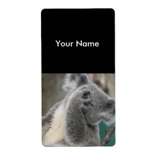 Label Address Stickers Koala Bear