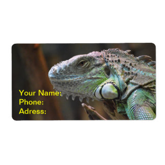 Label with head of colourful Iguana Lizard