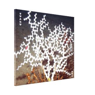 Laberinto coralino lona envuelta para galerías