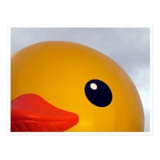 labio del ojo del pato postal