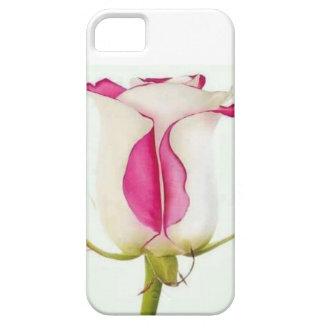 Labios color de rosa iPhone 5 fundas