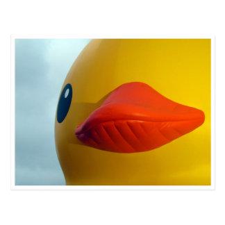labios de goma del pato postal
