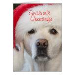 Laboratorio amarillo en tarjeta de Navidad del gor