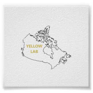 laboratorio amarillo origin.png impresiones