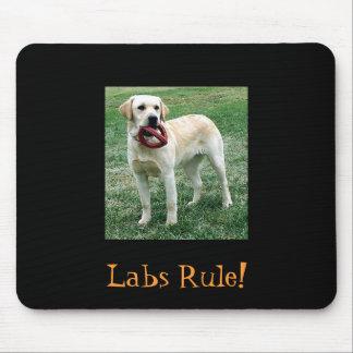 ¡Laboratorio amarillo, regla de los laboratorios! Tapetes De Raton