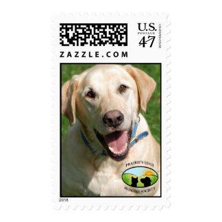 Laboratorio amarillo sonriente sellos postales