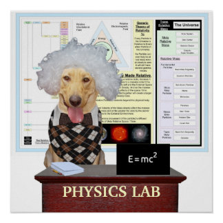 Laboratorio de la física póster