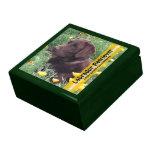 Laboratorio del chocolate en remiendo de la amapol cajas de joyas