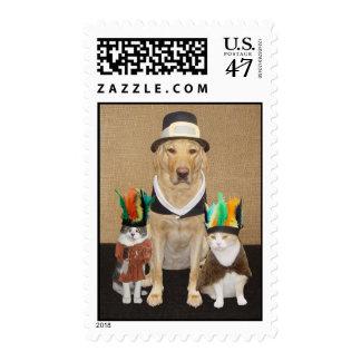 Laboratorio del peregrino/perro y gatitos indios timbre postal