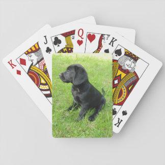 laboratorio negro puppy.png cartas de póquer