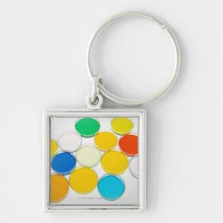 Laboratory Dish 2 Silver-Colored Square Keychain