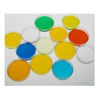 Laboratory Dish 2 Poster