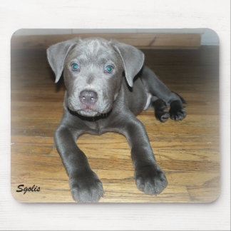 Labrabull Silver Puppy Mousepad Mouse Pads