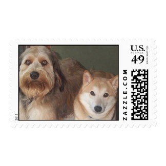 Labradoodle and Shiba Inu Stamp