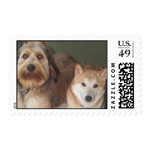 Labradoodle and Shiba Inu Stamps