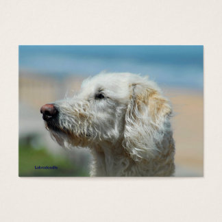 Labradoodle Business Card