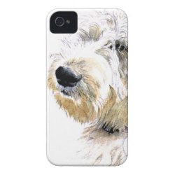 Case-Mate iPhone 4 Barely There Universal Case with Labradoodle Phone Cases design