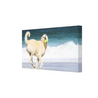 Labradoodle - día feliz en la playa impresión en lienzo estirada