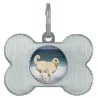 Labradoodle - día feliz en la playa placa de nombre de mascota