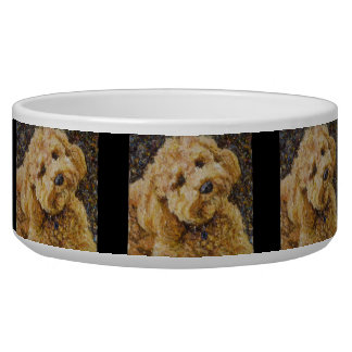 Labradoodle Dog Bowl
