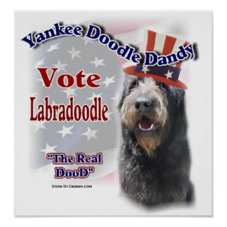 Labradoodle Gifts Poster