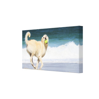 Labradoodle - Happy Day on the Beach Canvas Prints