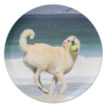 Labradoodle - Happy Day on the Beach Dinner Plate