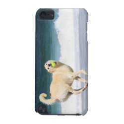 Case-Mate Barely There 5th Generation iPod Touch Case with Labradoodle Phone Cases design