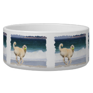 Labradoodle - Happy Day on the Beach Dog Bowls