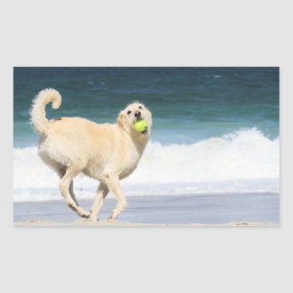 Labradoodle - Happy Day on the Beach Rectangular Sticker