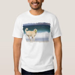 Labradoodle - Happy Day on the Beach T Shirt
